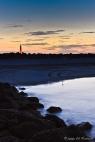 Ponce Inlet light, sunset, bird
